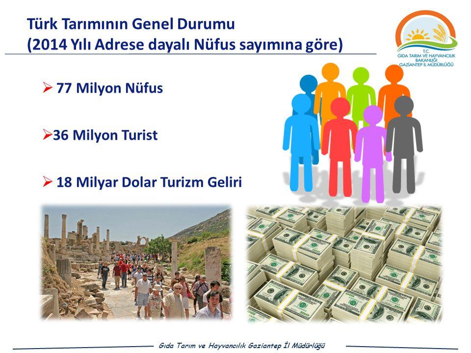 Türk Tarımının Genel Durumu