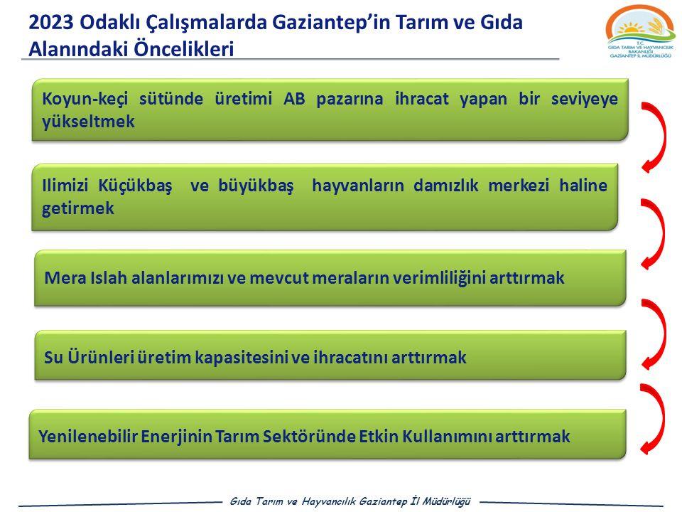 2023 Odaklı Çalışmalarda Gaziantep'in Tarım ve Gıda Alanındaki Öncelikleri