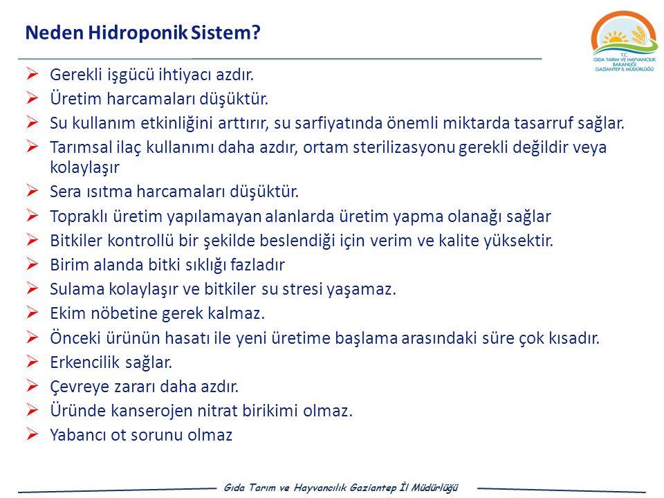 Neden Hidroponik Sistem