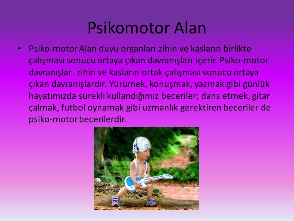 Psikomotor Alan