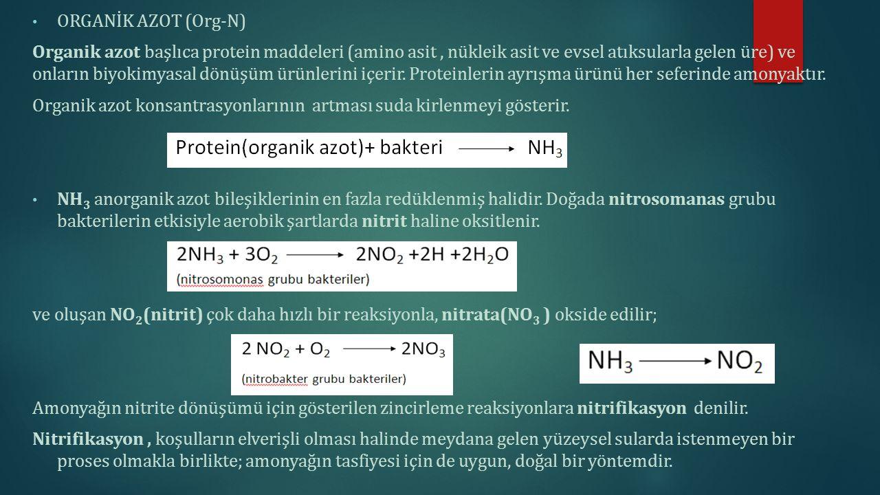ORGANİK AZOT (Org-N)