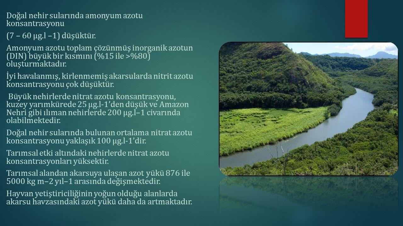 Doğal nehir sularında amonyum azotu konsantrasyonu (7 – 60 μg