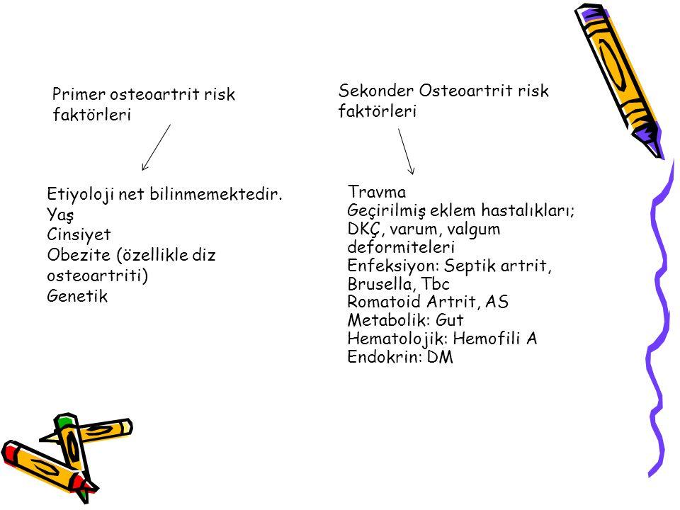 Primer osteoartrit risk faktörleri