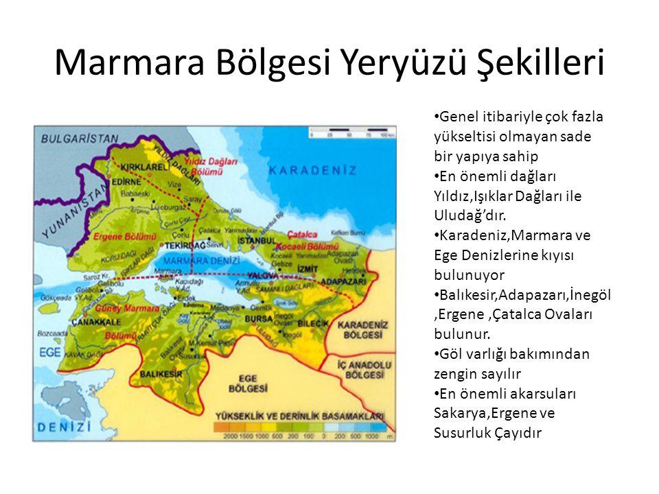 Marmara Bölgesi Yeryüzü Şekilleri
