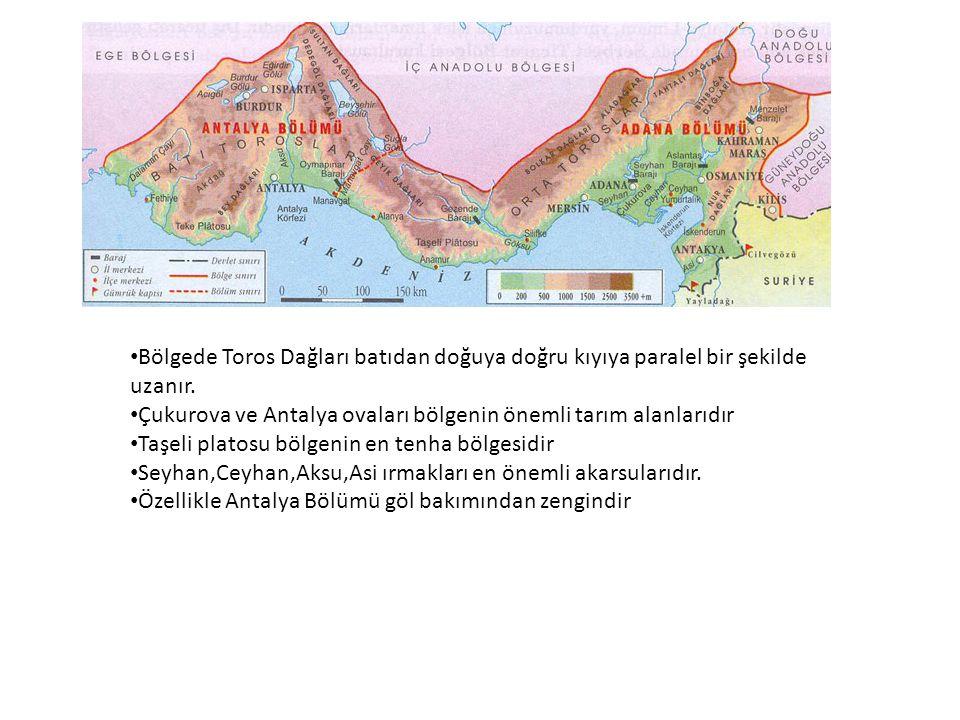 Bölgede Toros Dağları batıdan doğuya doğru kıyıya paralel bir şekilde uzanır.