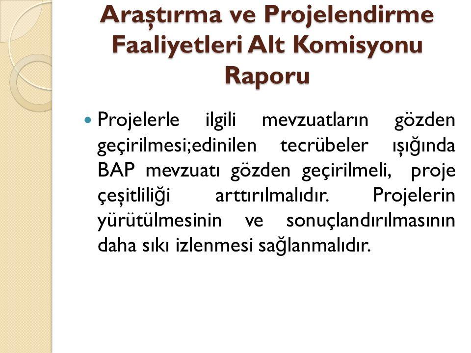 Araştırma ve Projelendirme Faaliyetleri Alt Komisyonu Raporu