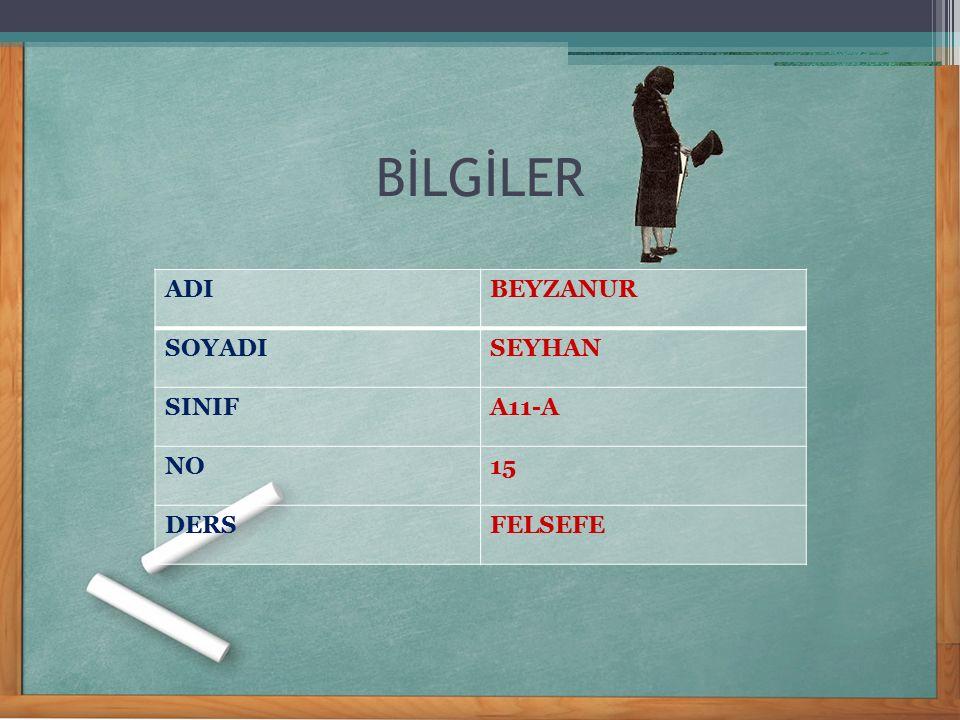 BİLGİLER ADI BEYZANUR SOYADI SEYHAN SINIF A11-A NO 15 DERS FELSEFE