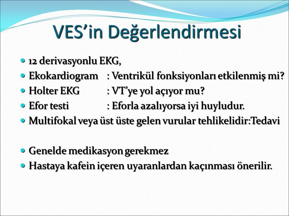 VES'in Değerlendirmesi
