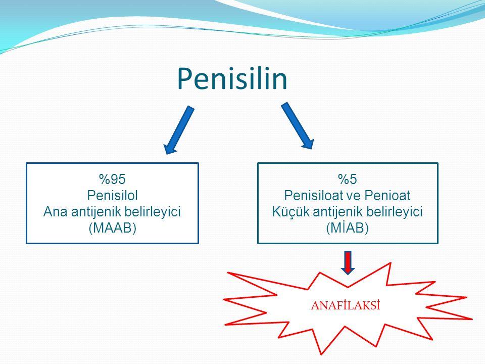 Penisilin %95 Penisilol Ana antijenik belirleyici (MAAB) %5