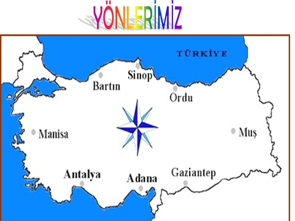 YÖNLERİMİZ
