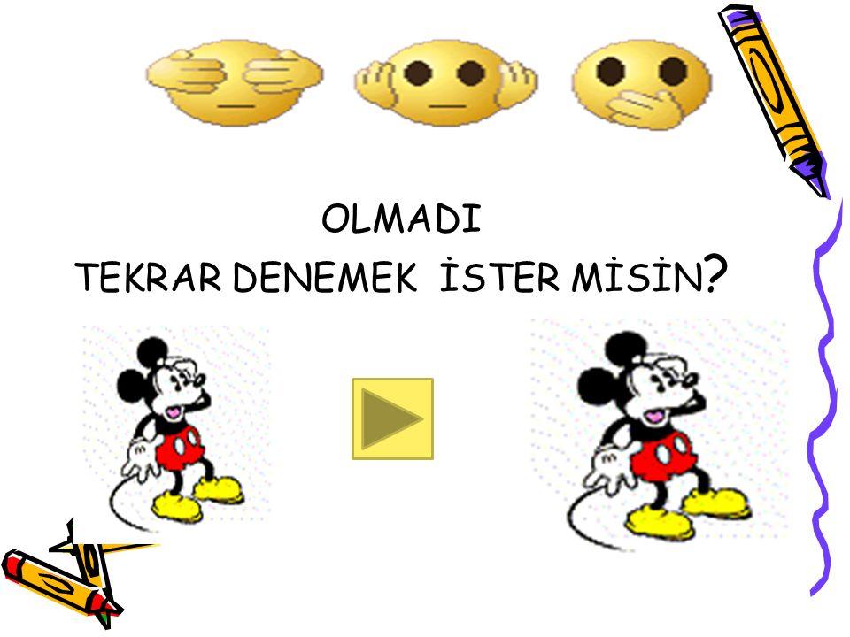 OLMADI TEKRAR DENEMEK İSTER MİSİN