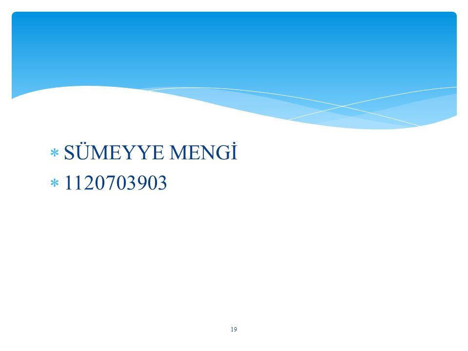 SÜMEYYE MENGİ 1120703903