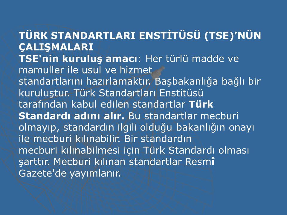 TÜRK STANDARTLARI ENSTİTÜSÜ (TSE)'NÜN ÇALIŞMALARI