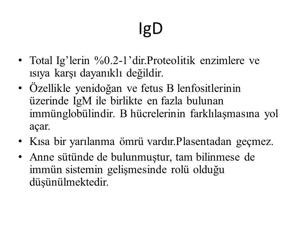 IgD Total Ig'lerin %0.2-1'dir.Proteolitik enzimlere ve ısıya karşı dayanıklı değildir.
