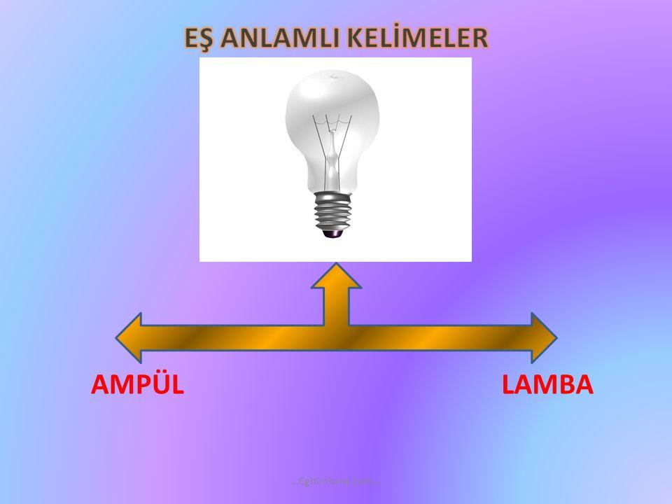 EŞ ANLAMLI KELİMELER LAMBA