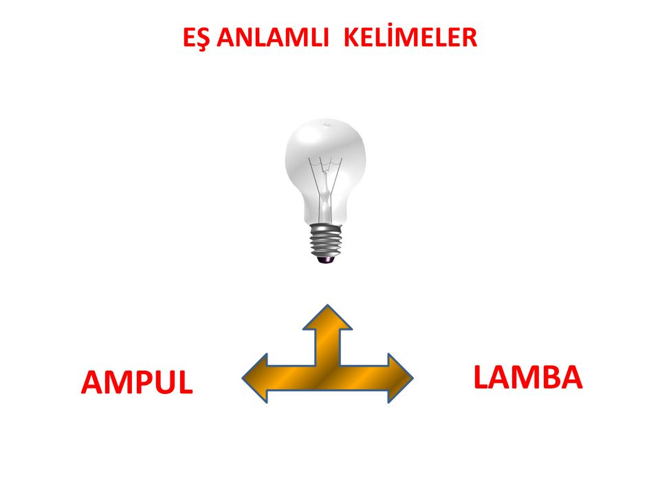EŞ ANLAMLI KELİMELER LAMBA AMPUL