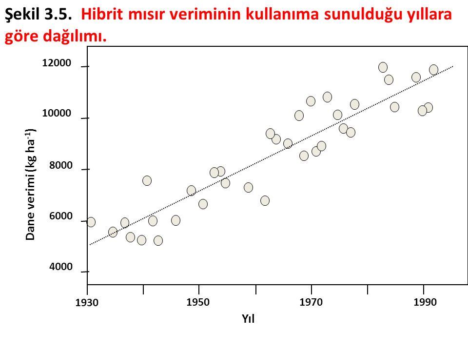 Şekil 3.5. Hibrit mısır veriminin kullanıma sunulduğu yıllara göre dağılımı.