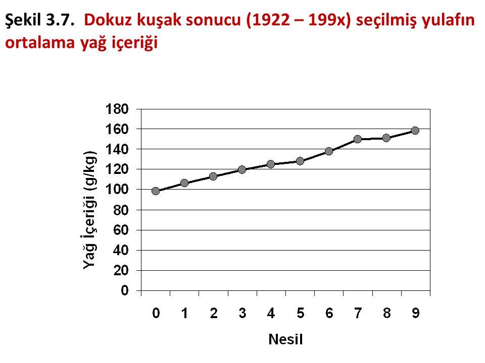 Şekil 3.7. Dokuz kuşak sonucu (1922 – 199x) seçilmiş yulafın ortalama yağ içeriği