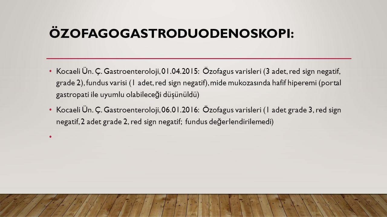 Özofagogastroduodenoskopi: