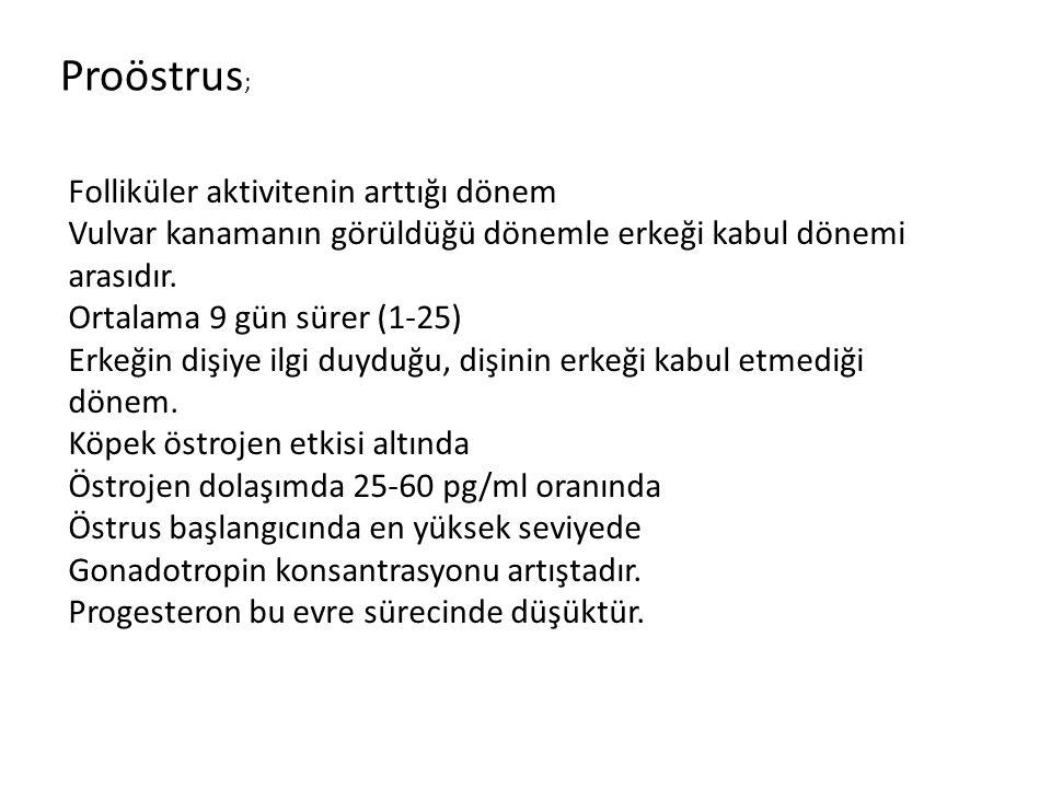 Proöstrus; Folliküler aktivitenin arttığı dönem