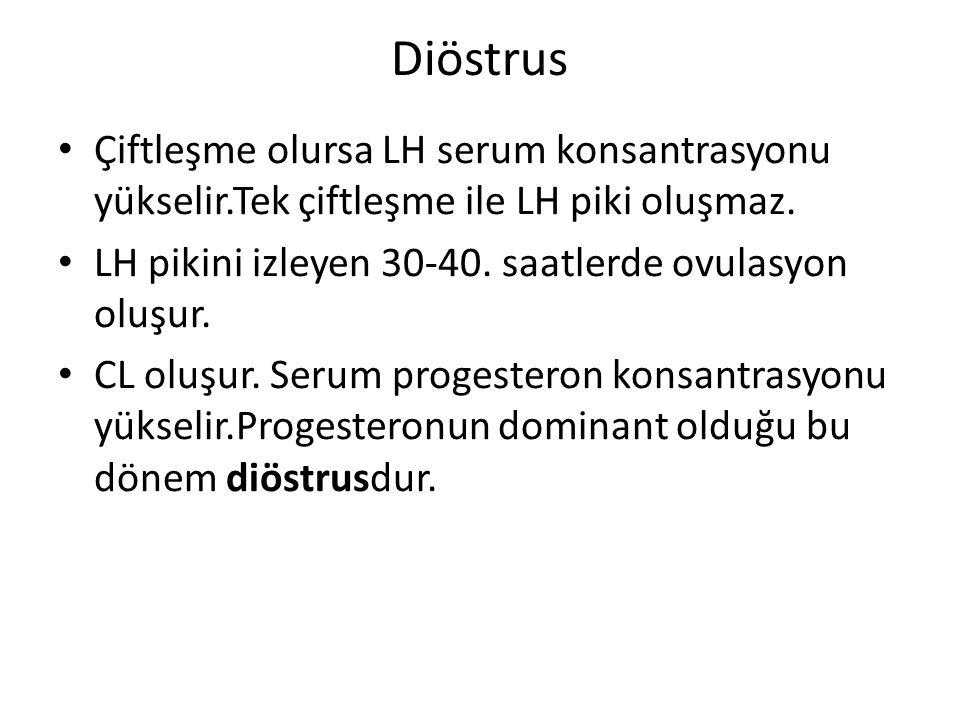 Diöstrus Çiftleşme olursa LH serum konsantrasyonu yükselir.Tek çiftleşme ile LH piki oluşmaz. LH pikini izleyen 30-40. saatlerde ovulasyon oluşur.