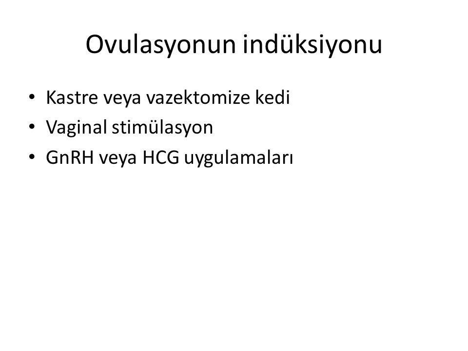 Ovulasyonun indüksiyonu