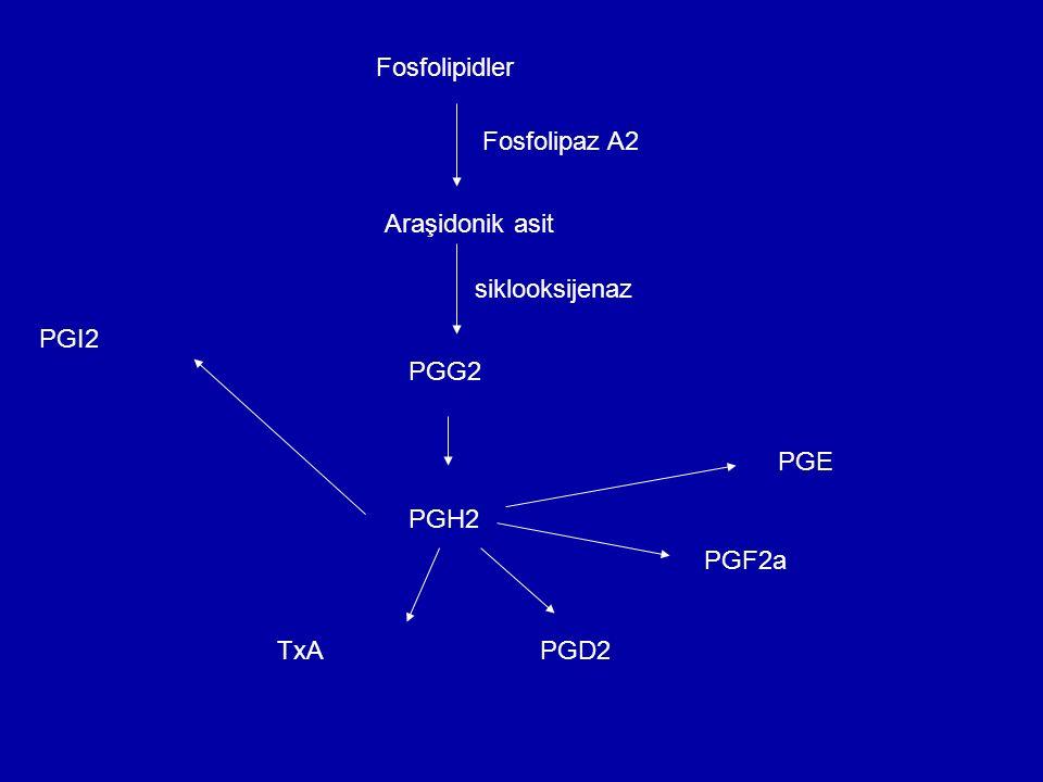 Fosfolipidler Fosfolipaz A2 Araşidonik asit siklooksijenaz PGI2 PGG2 PGE PGH2 PGF2a TxA PGD2