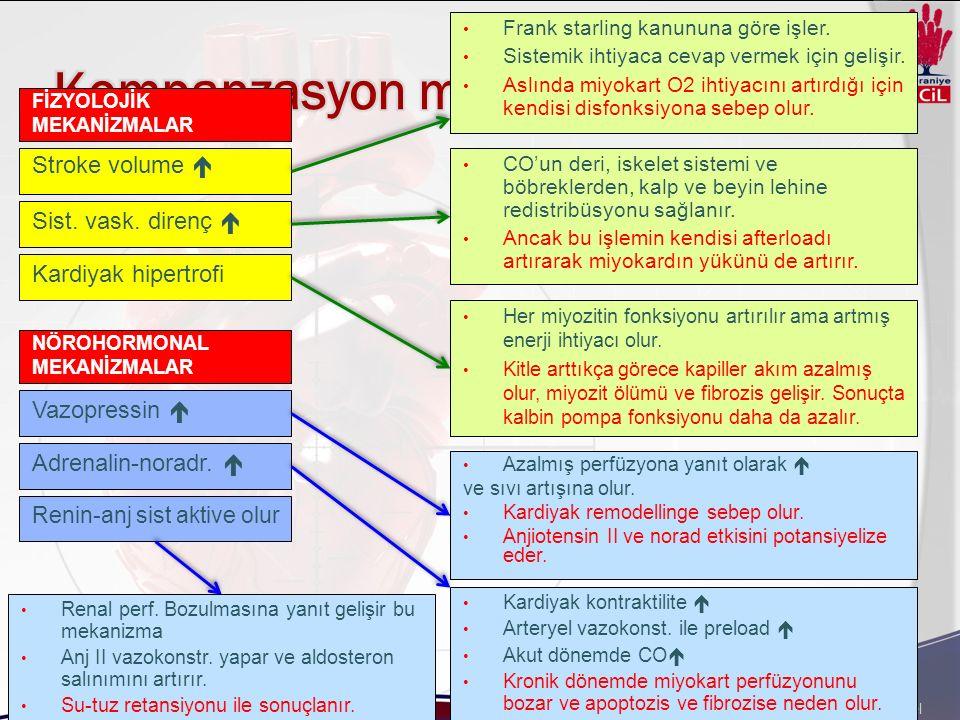 Kompanzasyon mekanizmaları