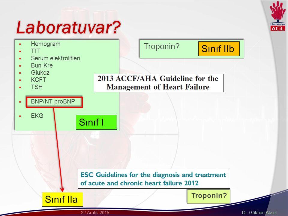 Laboratuvar Sınıf IIb Sınıf I Sınıf IIa Troponin Troponin Hemogram