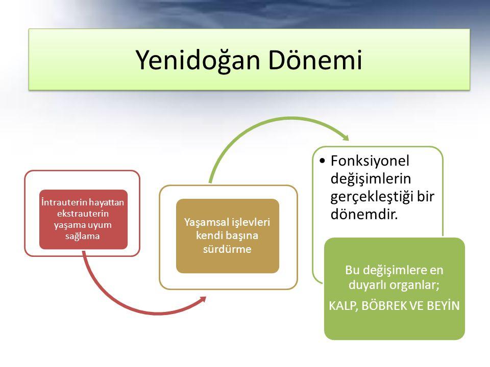 Yenidoğan Dönemi Bu değişimlere en duyarlı organlar;
