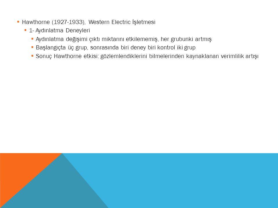 Hawthorne (1927-1933), Western Electric İşletmesi