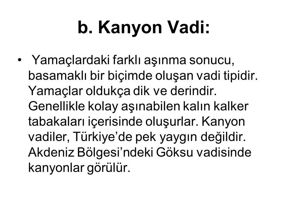 b. Kanyon Vadi: