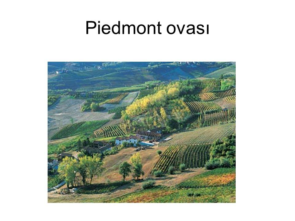 Piedmont ovası
