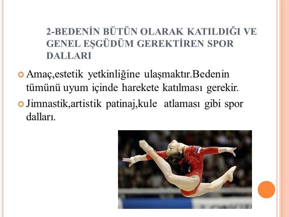 Jimnastik,artistik patinaj,kule atlaması gibi spor dalları.