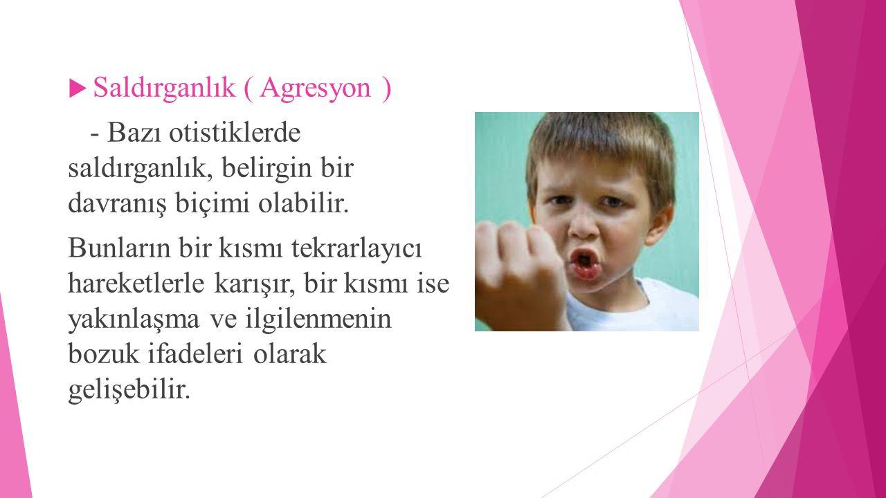 Saldırganlık ( Agresyon )