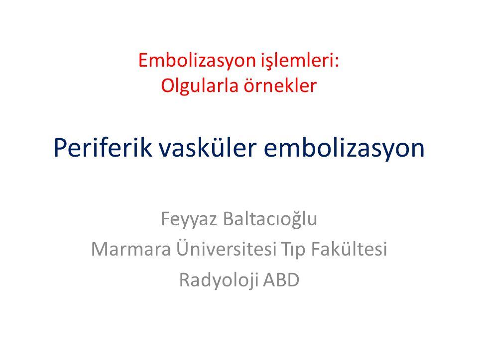 Feyyaz Baltacıoğlu Marmara Üniversitesi Tıp Fakültesi Radyoloji ABD