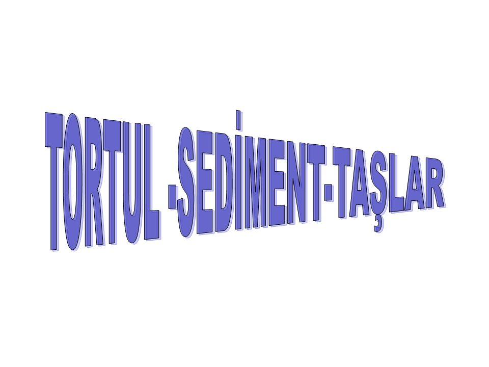 TORTUL -SEDİMENT-TAŞLAR
