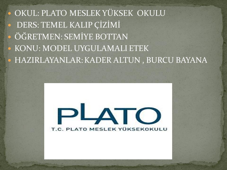 OKUL: PLATO MESLEK YÜKSEK OKULU