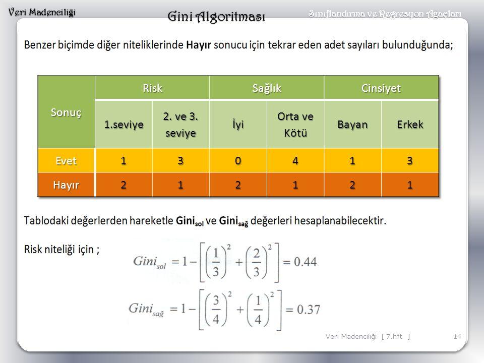 Gini Algoritması Sonuç Risk Sağlık Cinsiyet 1.seviye 2. ve 3. seviye