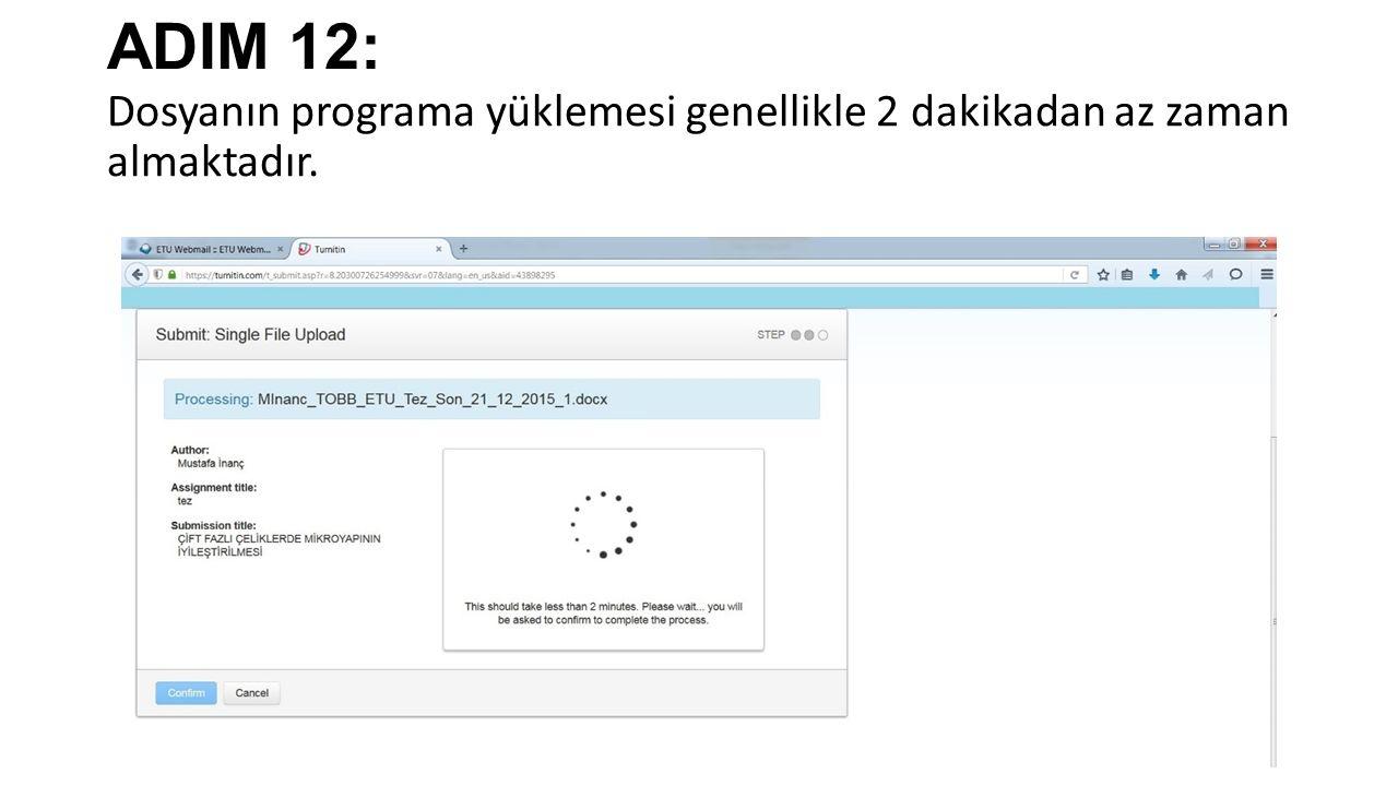 ADIM 12: Dosyanın programa yüklemesi genellikle 2 dakikadan az zaman almaktadır.
