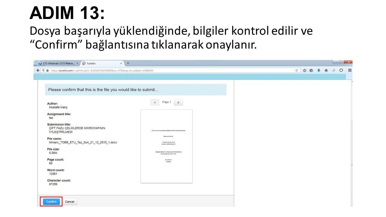 ADIM 13: Dosya başarıyla yüklendiğinde, bilgiler kontrol edilir ve Confirm bağlantısına tıklanarak onaylanır.