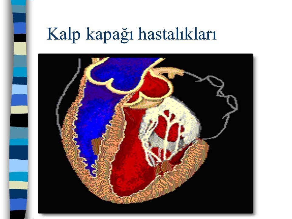 Kalp kapağı hastalıkları