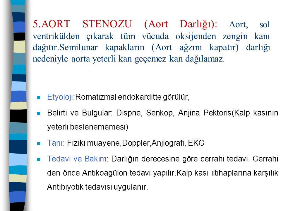 5.AORT STENOZU (Aort Darlığı): Aort, sol ventrikülden çıkarak tüm vücuda oksijenden zengin kanı dağıtır.Semilunar kapakların (Aort ağzını kapatır) darlığı nedeniyle aorta yeterli kan geçemez kan dağılamaz.
