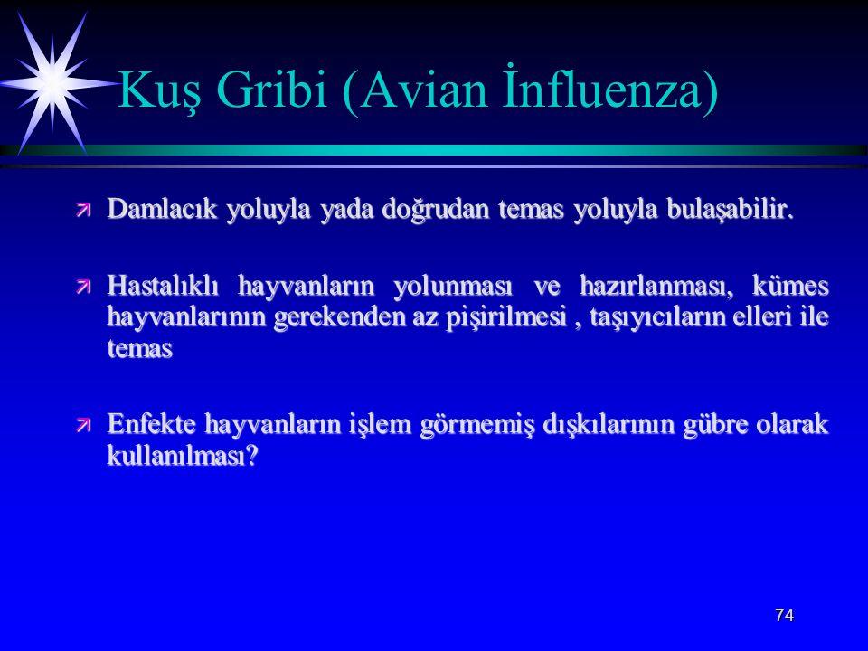 Kuş Gribi (Avian İnfluenza)