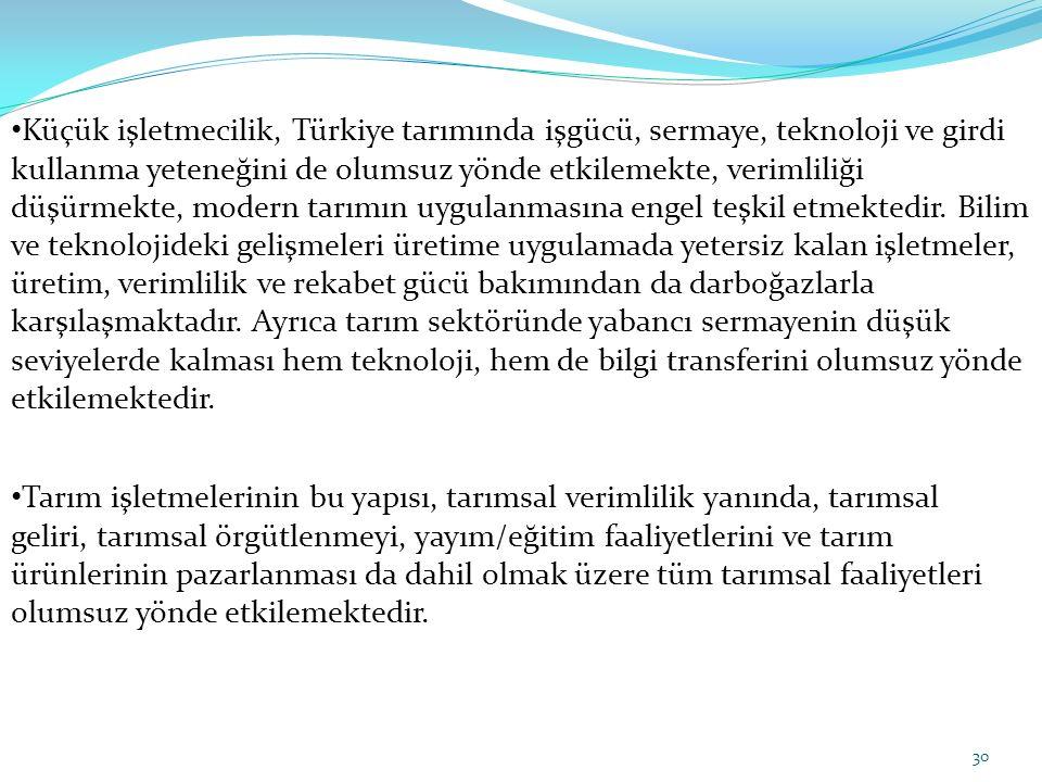 Küçük işletmecilik, Türkiye tarımında işgücü, sermaye, teknoloji ve girdi kullanma yeteneğini de olumsuz yönde etkilemekte, verimliliği düşürmekte, modern tarımın uygulanmasına engel teşkil etmektedir. Bilim ve teknolojideki gelişmeleri üretime uygulamada yetersiz kalan işletmeler, üretim, verimlilik ve rekabet gücü bakımından da darboğazlarla karşılaşmaktadır. Ayrıca tarım sektöründe yabancı sermayenin düşük seviyelerde kalması hem teknoloji, hem de bilgi transferini olumsuz yönde etkilemektedir.
