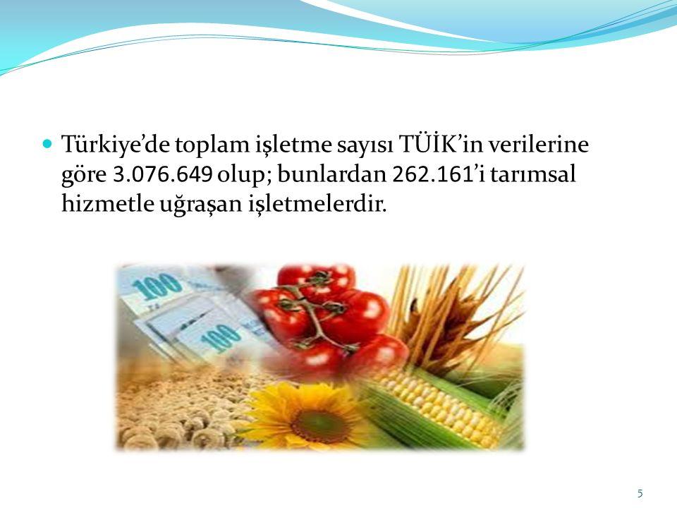 Türkiye'de toplam işletme sayısı TÜİK'in verilerine göre 3. 076
