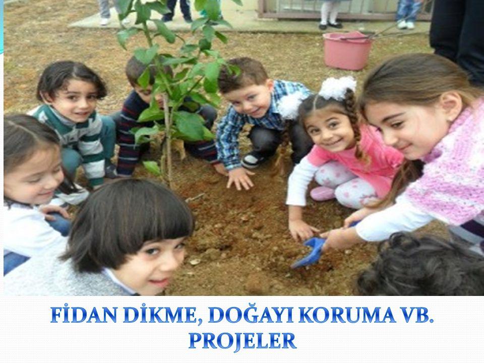 FİDAN DİKME, DOĞAYI KORUMA VB. PROJELER