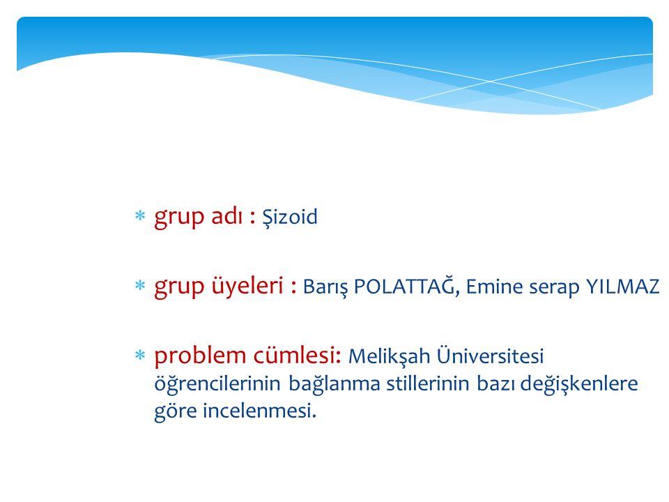 grup adı : Şizoid grup üyeleri : Barış POLATTAĞ, Emine serap YILMAZ.
