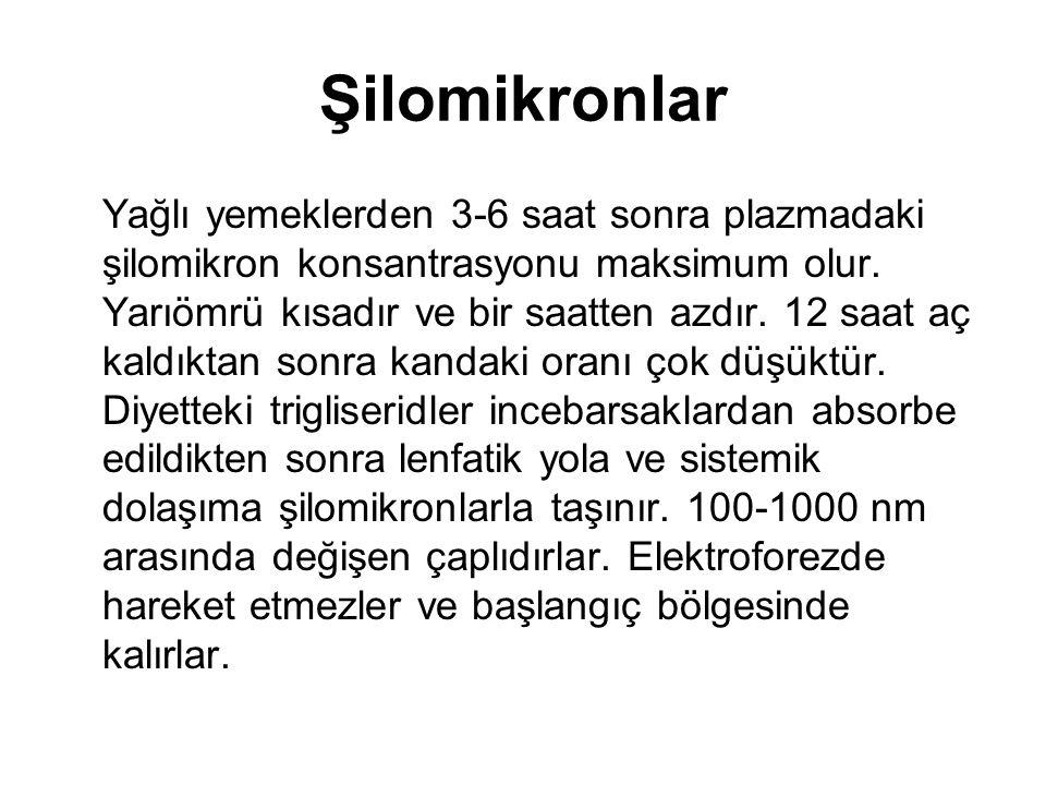 Şilomikronlar