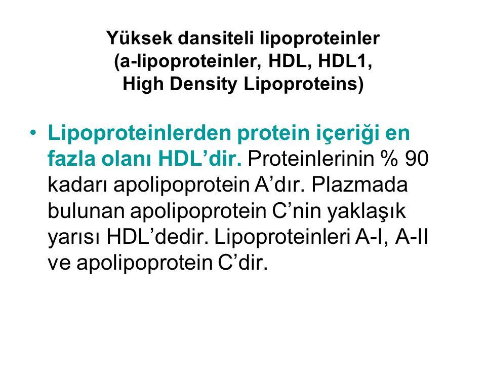 Yüksek dansiteli lipoproteinler (a-lipoproteinler, HDL, HDL1, High Density Lipoproteins)